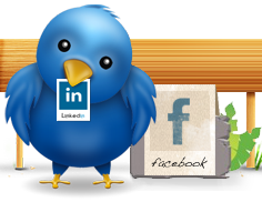 This Australian Virtual Assistant business can get your business social media ready quickly