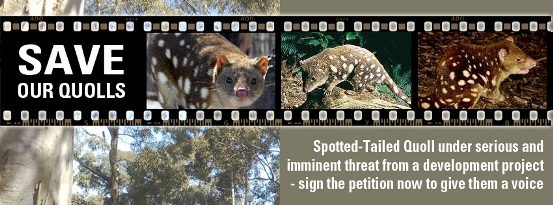 Save Our Quolls on Facebook
